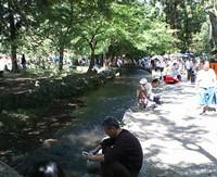上賀茂神社内を流れる小川